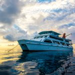 Great Barrier Reef Liveaboard DEAL