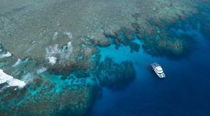 Great Barrier Reef Tour, Reef Experience