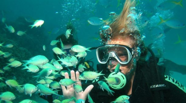 Great Barrier Reef Liveaboard and Skydive